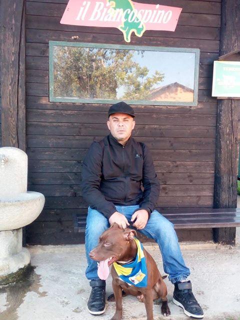 Lupiin – quando un pitbull è libero di esprimere le sue potenzialità